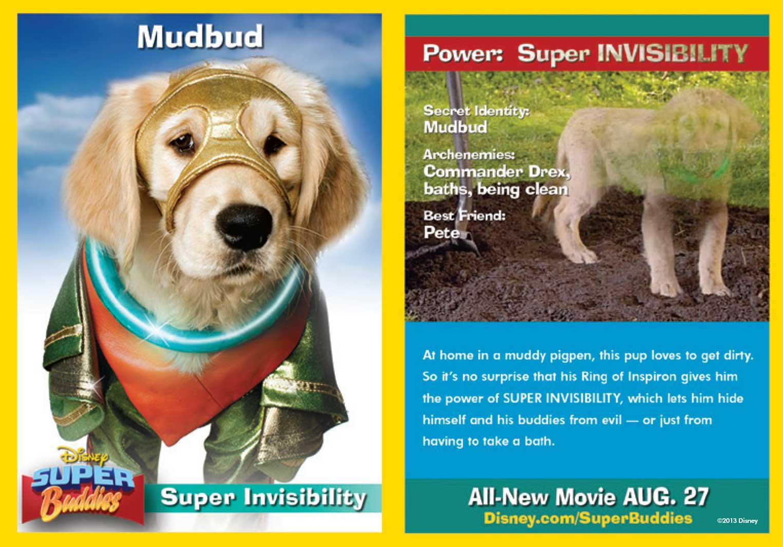 mudbud trading card