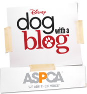 Disney Dog with a Blog - 10/12 at 9:40p/8:40c - ASPCA Kids